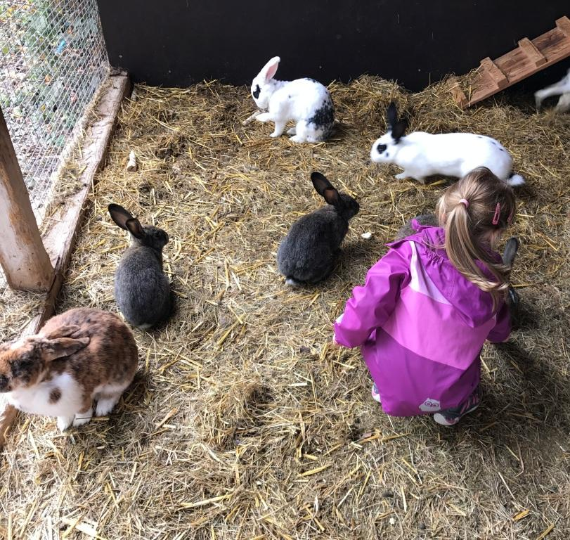Franken mit Kindern: Urlaub auf dem Ferienhof Frankenhöhe in Markt Erlbach