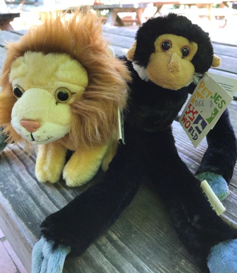 Zoo Osnabrück mit Kindern - Affe und Löwe