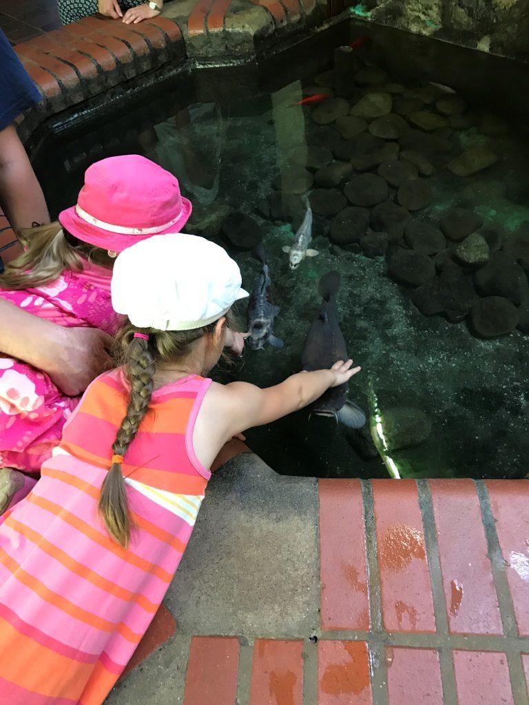 Zoo Osnabrück mit Kindern - Fische