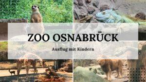 Zoo Osnabrück - Ausflug mit Kindern - Titelbild