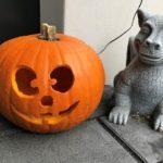 Halloween Kürbis schnitzen mit Kindern