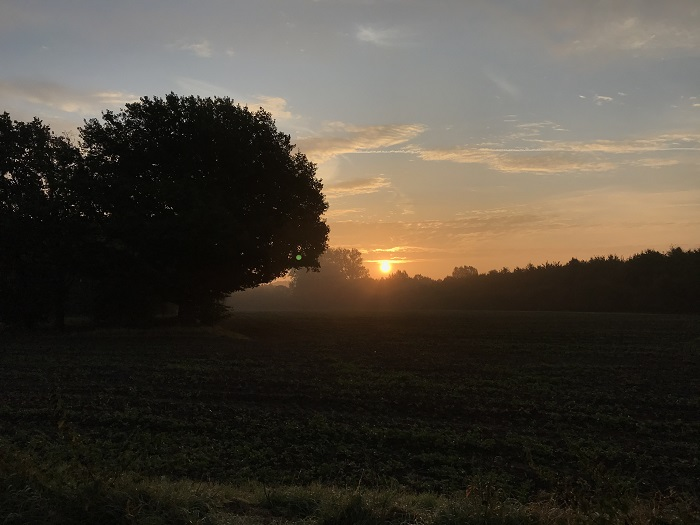 30am30 - 30 schöne Momente im September 2020 - Sonnenaufgang