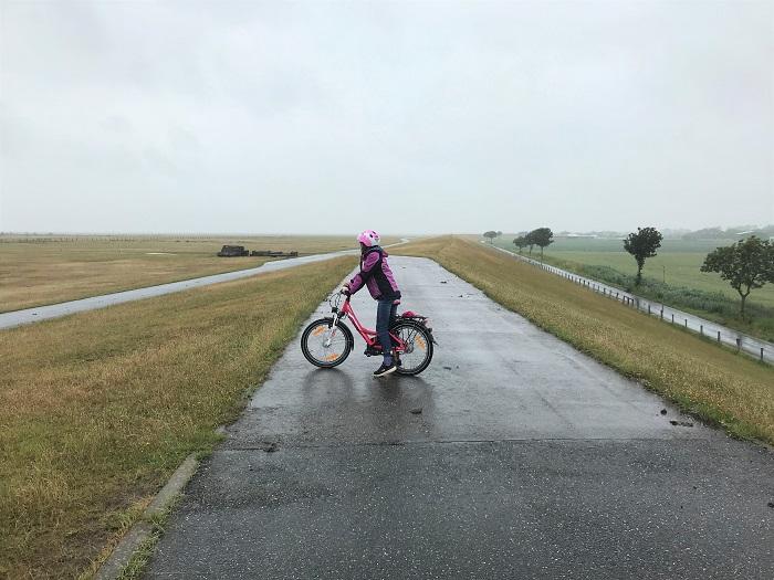 Nordsee mit Kindern - Urlaub in Friedrichskoog:    Fahrradtour am Deich