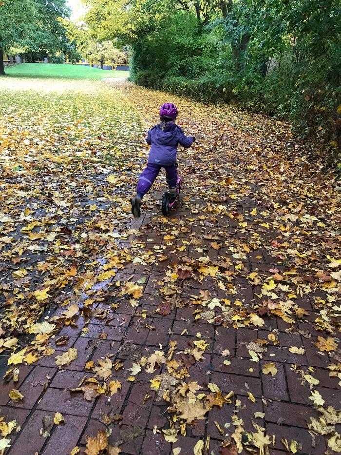 30am30 - 30 schöne Momente im Oktober 2020 - Herbstspaziergang