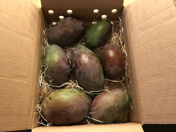 30am30 - 30 schöne Momente im Oktober 2020 - Mango-Kiste