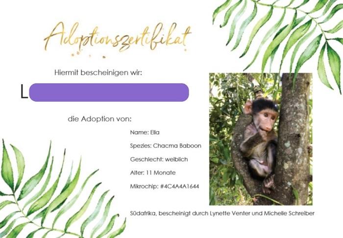 30am30 - Zertifikat Affenpatenschaft
