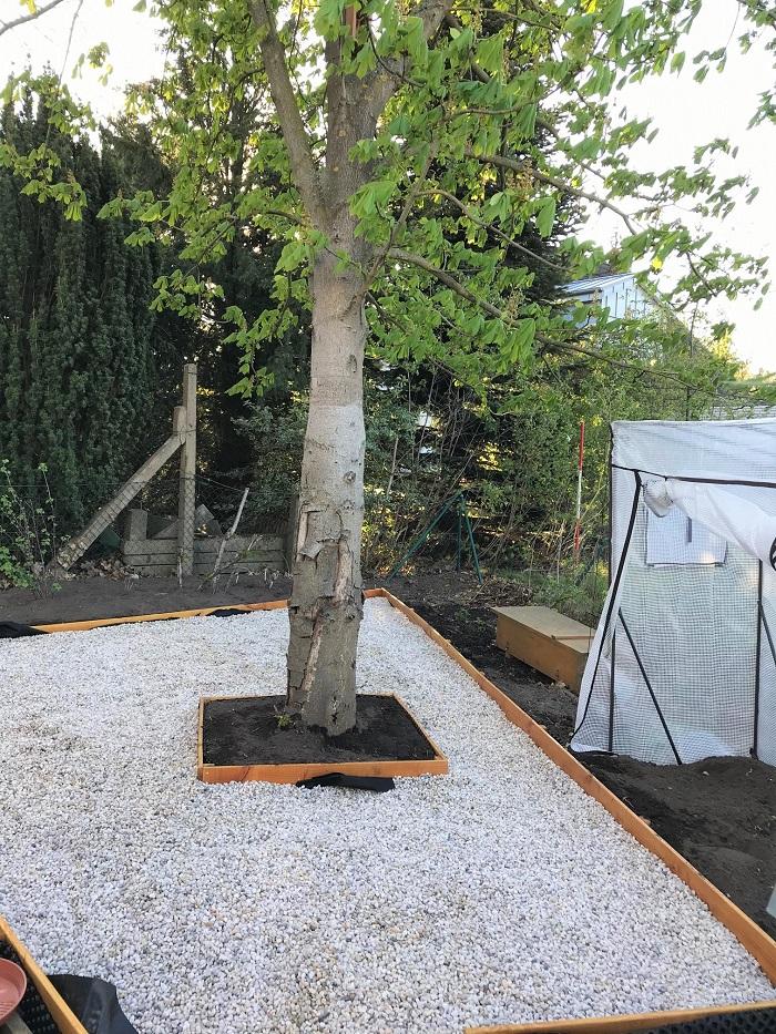 Mein Jahresrückblick 2020 - Garten-Projekt Gemüsebeet und Sitzecke