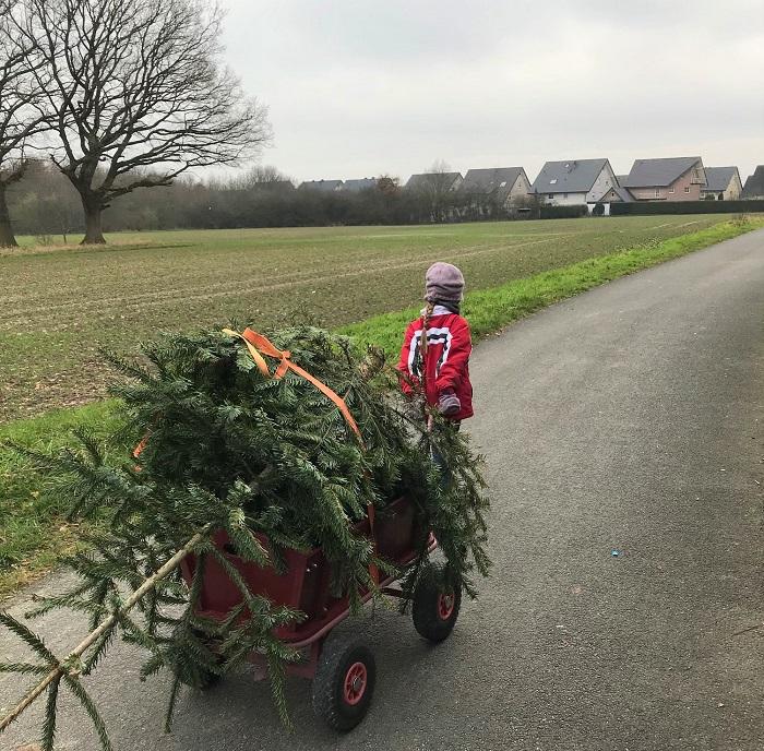 30am30 - 30 schöne Momente im Januar 2021 - Weihnachtsbaum entsorgen