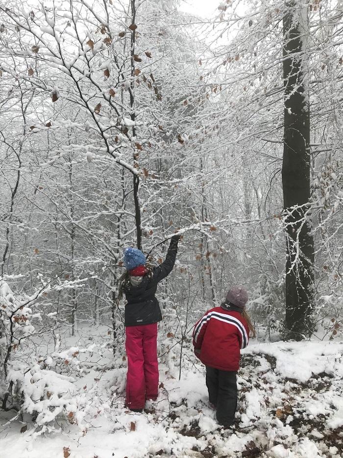 30am30 - 30 schöne Momente im Januar 2021 - Schneespaziergang