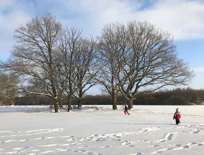 30am30 - 30 schöne Momente im Februar 2021 - Schnee auf dem Feld