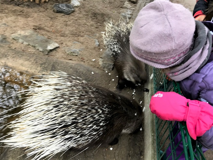 30am30 - 30 schöne Momente im April 2021 - Tierpark Nadermann