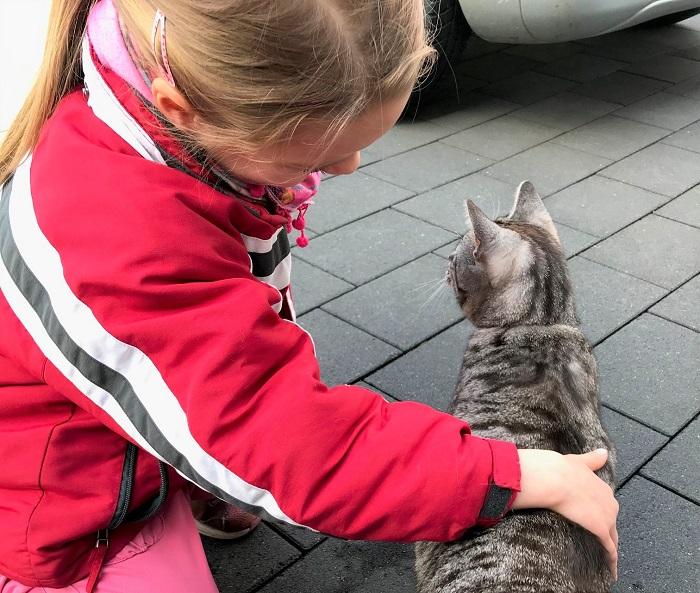 30am30 - 30 schöne Momente im Mai 2021 - Katze kraulen