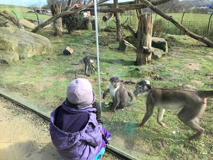 30am30 - 30 schöne Momente im März 2021 - Zoo Osnabrück