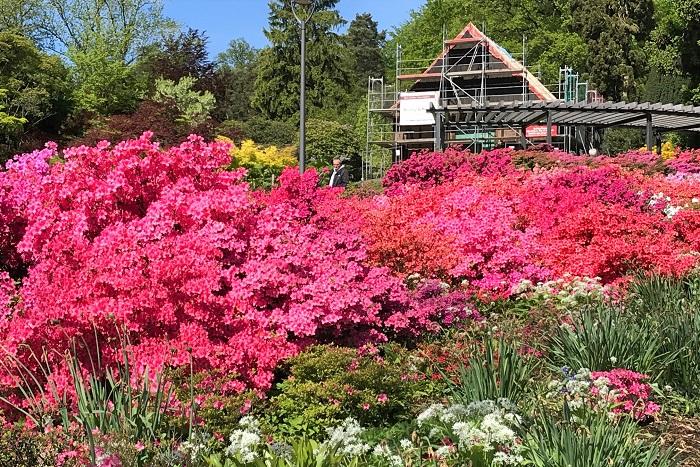30am30 - 30 schöne Momente im Mai 2021 - botanischer Garten