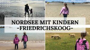 Nordsee mit Kindern - Urlaub in Friedrichskoog: Titelbild