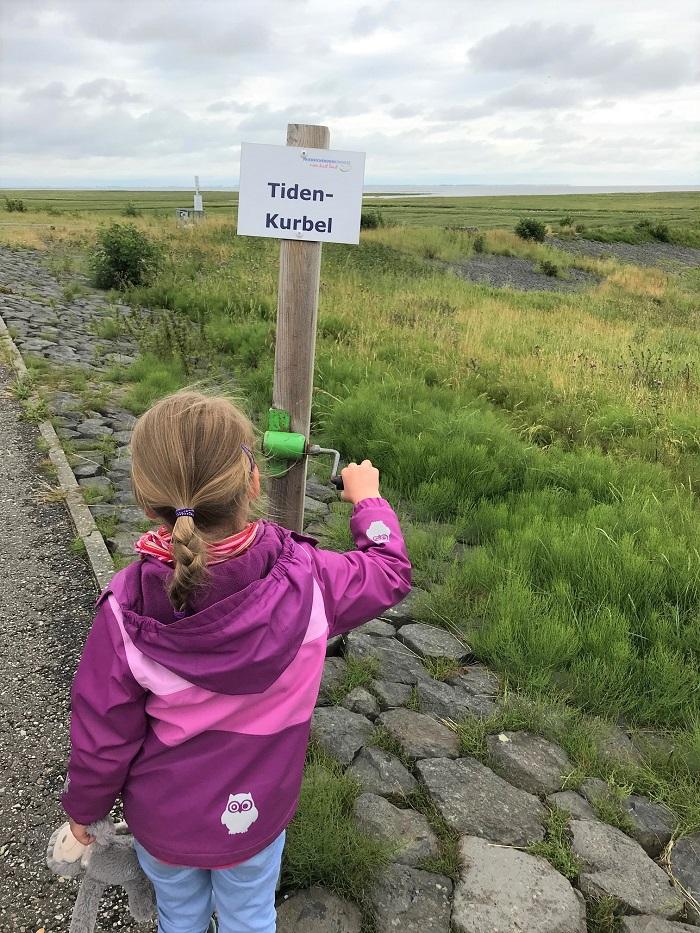 Nordsee mit Kindern - Urlaub in Friedrichskoog: Wanderung auf dem Trischendamm