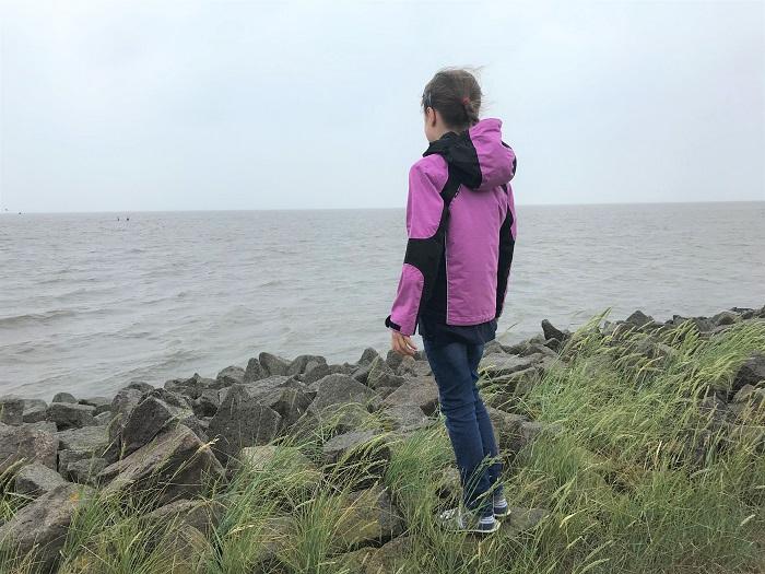 Nordsee mit Kindern - Urlaub in Friedrichskoog: Wiesenstrand